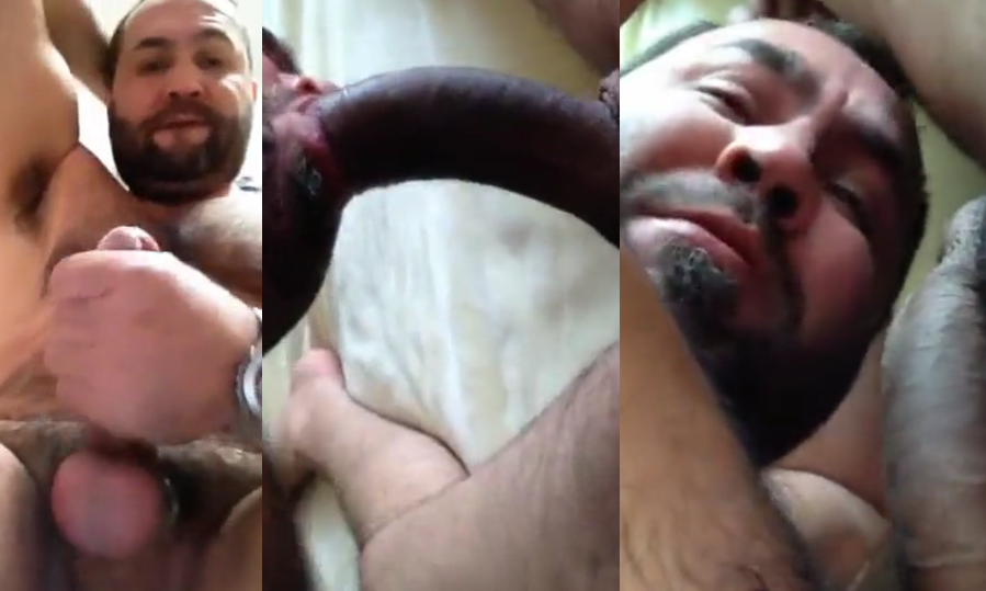 Sexo gay urso